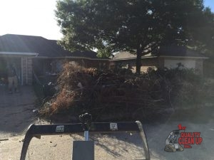 Benefits of Yard Debris Removal & Cleanup