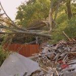Hurricane Damage Clean Up